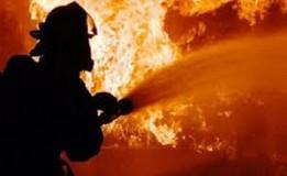 17 Unit Damkar Dikerahkan dalam Kebakaran Lapak Kayu di Jakbar